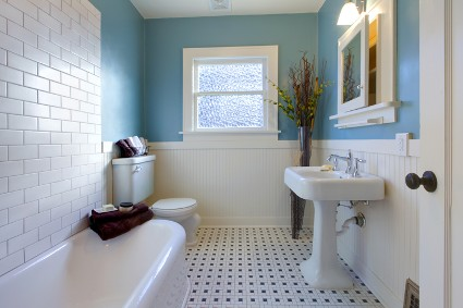 Michigan Sewer & Drain, burton, MI, plumber, services, bathroom, bathtubs